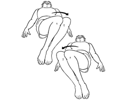 Best Back Exercises Stretches Lower Muscles Soreness Spasms Muscle Low likewise Mobile Knee as well All About The Squat together with Iliacus Stretch It Is Not Always About Release Work together with Acupressure For High Blood Pressure. on side knee pain